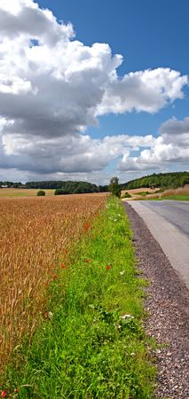 A photo of a country road in Denmark photo