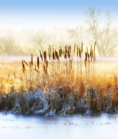 january sunrise: Hermoso invierno Foto de archivo