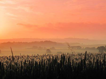 Early morning - summer sunrise Stock Photo - 5417138