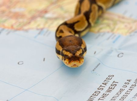 invasion: Invasion de serpent - contenu symbolique