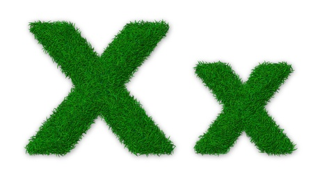 lowercase: Illustration of capital and lowercase X letter made of grass