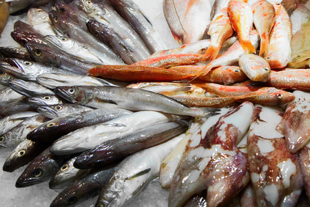 Various fresh fish on ice in a Barcelona market