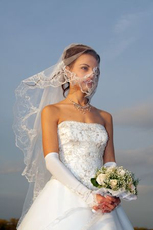 modesty: Bride in wedding gown Stock Photo
