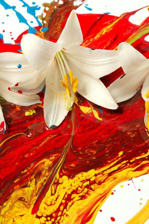 Combination of artificial paints and natural elements photo