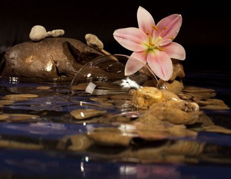 Composition for a relaxation from sea stones and a lily.  photo