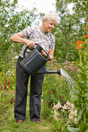 watered: The elderly woman pours water on flowers in the garden in summer day Stock Photo