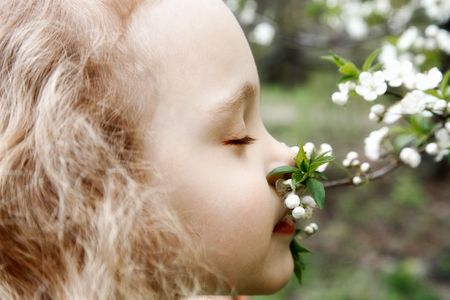 year profile: Beautiful little girl  smells a tree flower