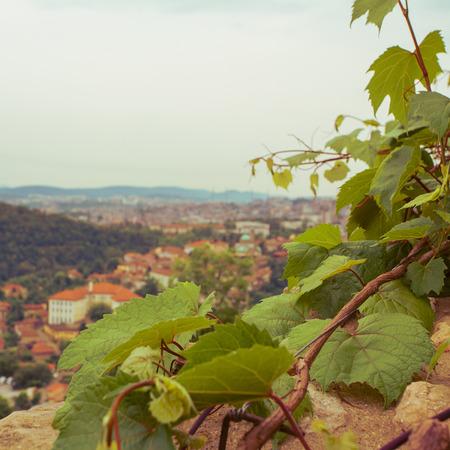 veliko tarnovo: Veliko tarnovo town in Bulgaria Stock Photo