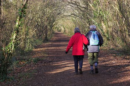 rout: An elderly couple walking along a woodland path. Stock Photo