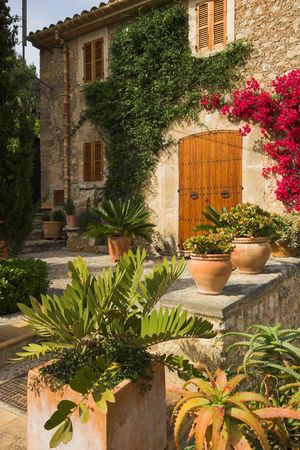 forground: Garden with path leading to double doors. Pots in forground Stock Photo