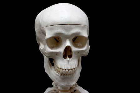 Closeup of a skull isolated on black photo