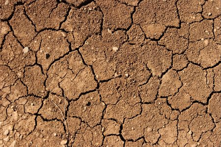 aridness: Detailed closeup of dried out brown soil Stock Photo