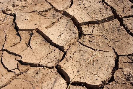 Texture of brown, dried out soil Stock Photo - 895212