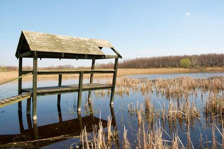 peace risk: Swamp with ruined wooden structure over it