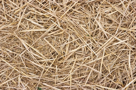 Closeup of a haystack for rural background photo
