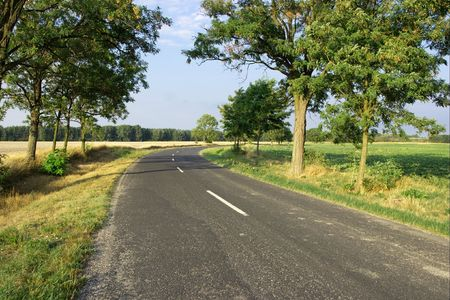 Bend of the road between trees in a rural area Stock Photo - 1826832