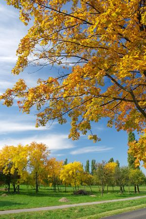 Colorful autumn scenery with blue sky photo