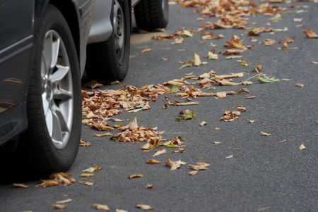Parking cars on road full of fallen autumn leaves photo