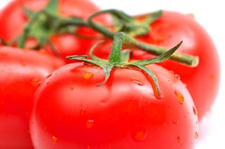 Closeup of tomatos isolated on white background photo
