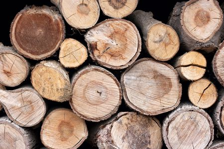 Pile of logs cut for firewood photo