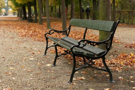 Bench in an autumn park with fallen leaves photo