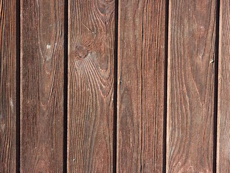 carpentery: Brown wood texture