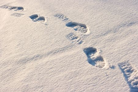 Footprints in the fresh snow photo