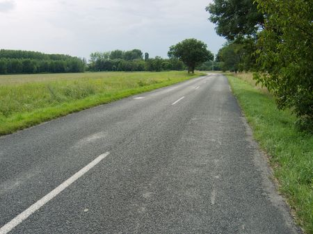 Road going through a rural landscape Stock Photo - 4407784