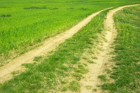 dirtroad: Dirtroad leading through an agricultural field Stock Photo