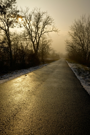 Long road through the winter countryside photo