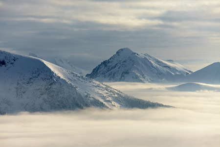 fog white: High mountain range in winter