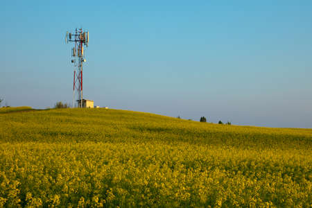 transmitter: Transmitter tower above a blooming rapeseed field