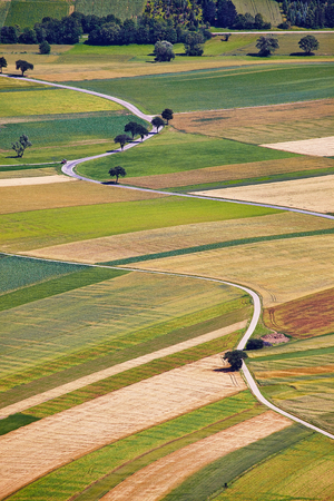 Aerial view of agricultural fields