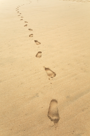 Footsteps on a sandy beach photo