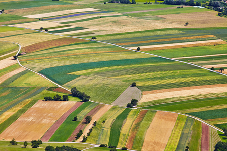 farming area: Aerial view of agricultural fields