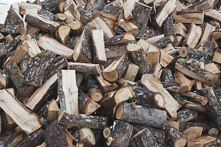 sawed: Pile of logs chopped into pieces
