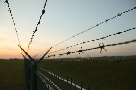 invade: Barbed wire fence against clear blue sky