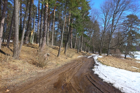 mud and snow: Dirtroad crossing the countryside in spring Stock Photo