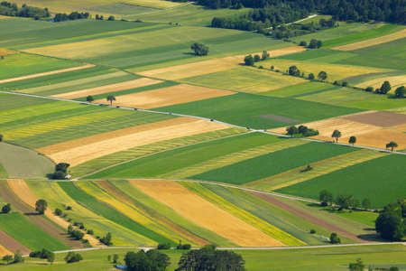 agricultural farm land: Aerial view of agricultural fields