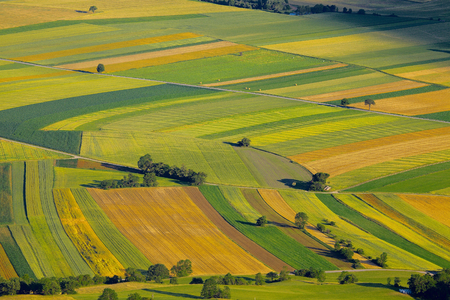 to field: Aerial view of agricultural fields