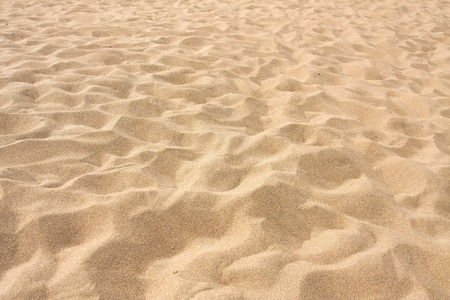 beach: Lines in the sand of a beach