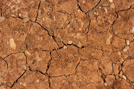 barrenness: Dry brown soil texture