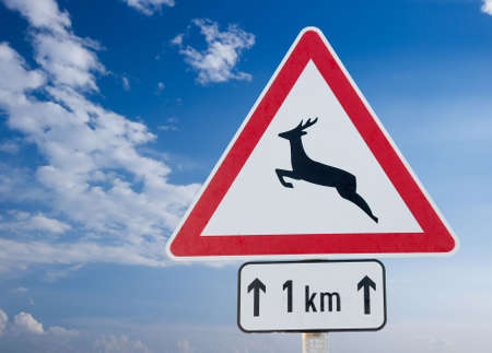warns: Traffic sign warns about wild animals crossing the road