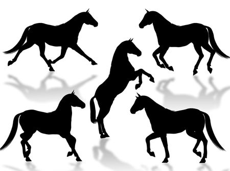 Black horse silhouettes in different poses and attitudes Stock Photo