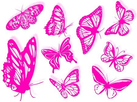 country flowers: Butterfly silhouettes to represent nature and spring Stock Photo