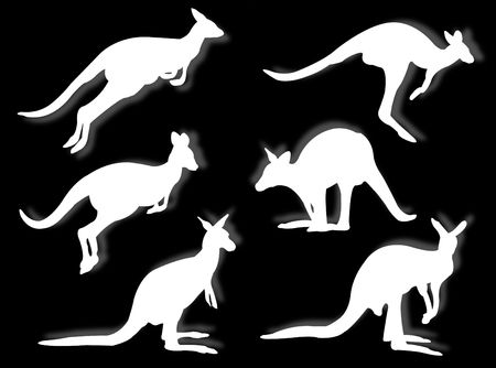 marsupial: kangaroos in silhouettes in different poses and attitudes