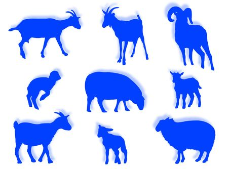domestico: Sheep and goats in silhouette in different poses Stock Photo