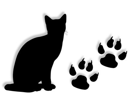 animal track: Cat silhouette with tracks silhouette on the background