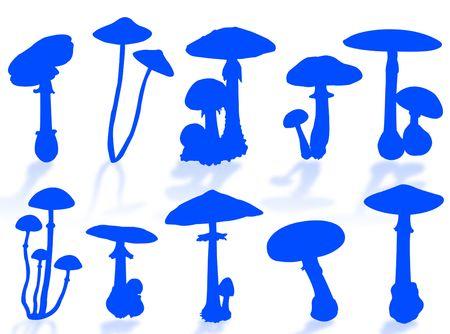 spores: Mushrooms silhouette as symbol of autumn season