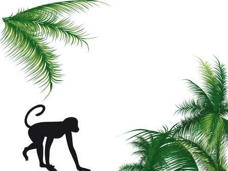 Monkey walking with the palm on the background Illustration